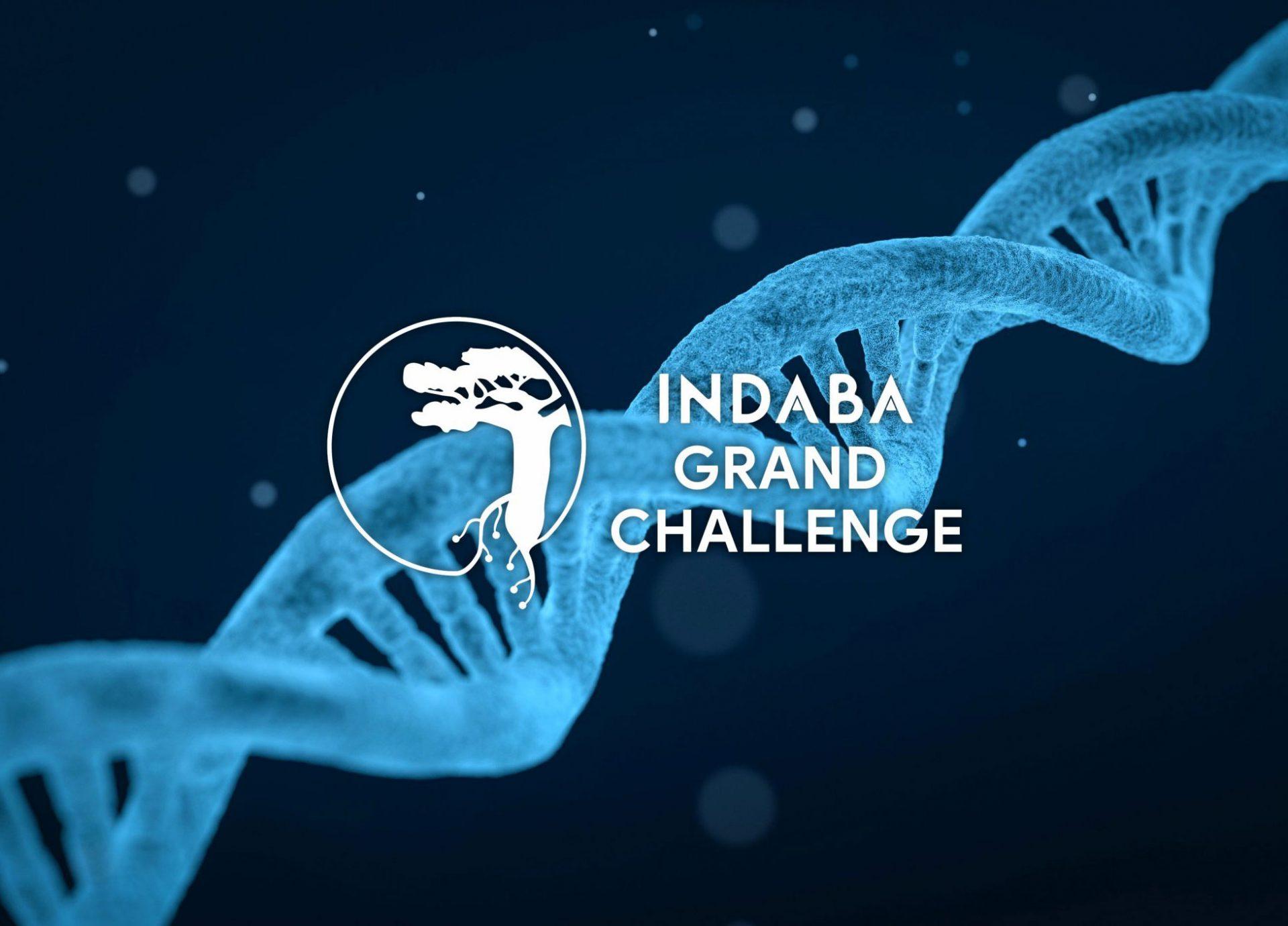 Indaba Grand Challenge